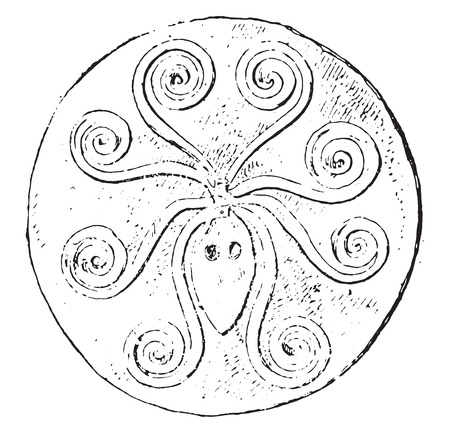 Squid on a gold plate, vintage engraved illustration.