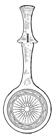 skimmer: Skimmers found at Pompeii, vintage engraved illustration.