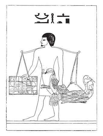 breeder: A bird breeder in Egypt, vintage engraved illustration. Illustration