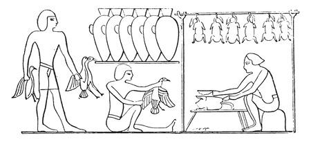 poultry: Preparation of poultry, vintage engraved illustration.