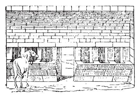 old barn: Granaio antico, vintage illustrazione inciso.
