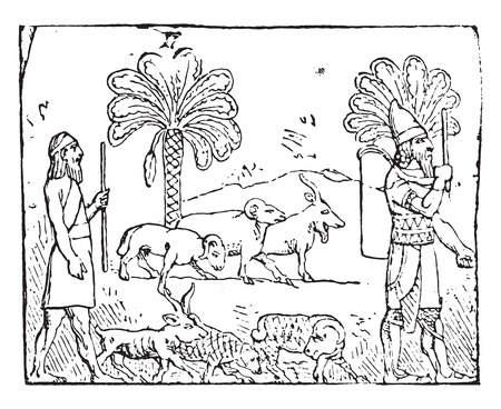 shepherds: Shepherds, vintage engraved illustration.