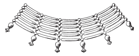 Necklace fragment form of cylinders, vintage engraved illustration. Ilustracja