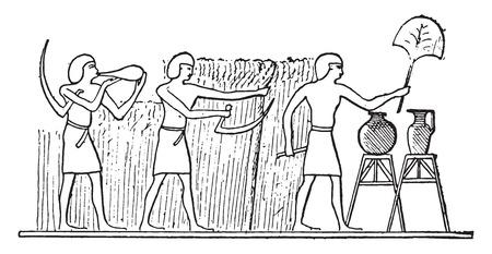 farming: Refreshments for reapers, vintage engraved illustration. Illustration