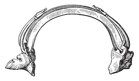 handle: Vase handle, vintage engraved illustration.