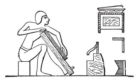 Wood veneer, vintage engraved illustration.