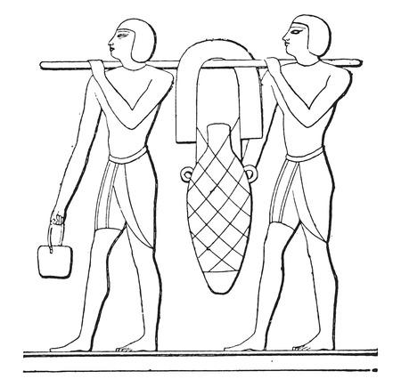 anforas: Ánforas Transporte, ilustración de la vendimia grabado.