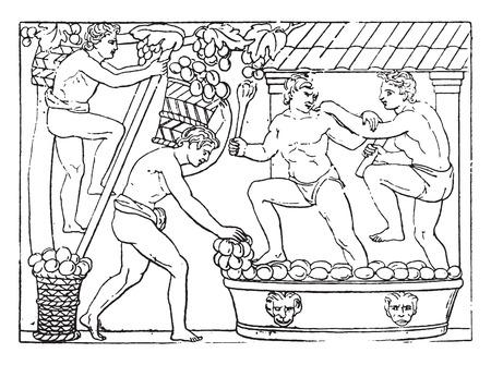 Baskets brought to the press, vintage engraved illustration. Çizim