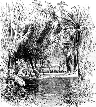 banquet: Banquet in the Botanical Garden of Saint-Pierre (Martinique), vintage engraved illustration. Journal des Voyages, Travel Journal, (1879-80).