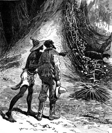 vines: Robinsons guyana. Imagine vines clinging to it all, vintage engraved illustration. Journal des Voyage, Travel Journal, (1880-81). Stock Photo