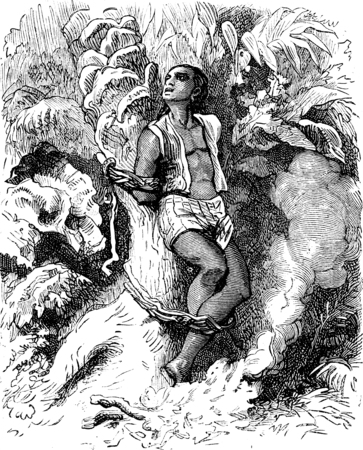 dramas: Dramas of India. The trunk of a palm tree, a human creature was attached, vintage engraved illustration. Journal des Voyages, Travel Journal, (1879-80).