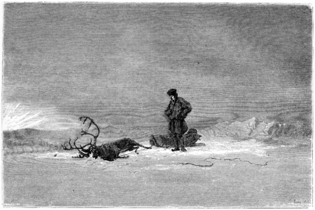 lapland: 1866 Painting in a Salon called Winter in Lapland, showing a traveller looking over his dead reindeer, vintage engraved illustration. Magasin Pittoresque - 1867