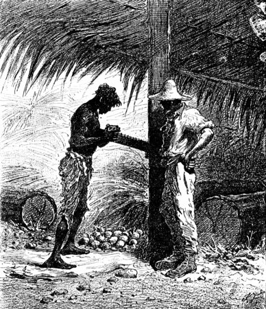 Robinsons of Guyana. He slid on its grated potato, vintage engraved illustration. Journal des Voyage, Travel Journal, (1880-81). Stock Photo