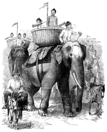 advancing: Elephants Burmah. These animals are advancing majestically, vintage engraved illustration. Journal des Voyages, Travel Journal, (1879-80).