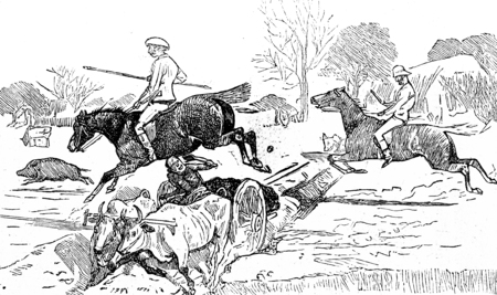 bullock: The steeplechase, vintage engraved illustration. Journal des Voyage, Travel Journal, (1880-81).