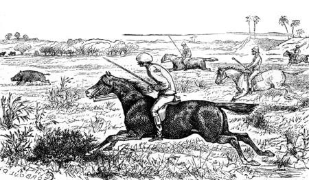 Gallop, vintage engraved illustration. Journal des Voyage, Travel Journal, (1880-81).