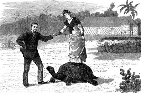 plant stand: A turtle monster, vintage engraved illustration. Journal des Voyages, Travel Journal, (1879-80). Stock Photo