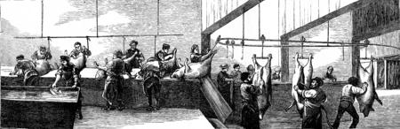 slaughter: Cutting, vintage engraved illustration. Journal des Voyage, Travel Journal, (1879-80).