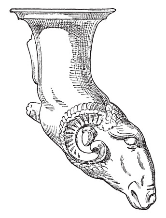 Rhyton with Aries's head., vintage engraved illustration. 일러스트