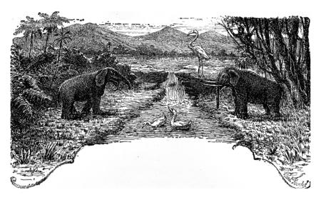 The Pliocene period, vintage engraved illustration. Earth before man – 1886. Reklamní fotografie