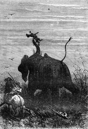 kampfhund: Shook es in der Luft, Jahrgang gravierte Darstellung. Jules Verne 3 Russisch und 3 Englisch, 1872. Lizenzfreie Bilder