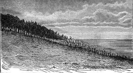 shores: Forest being flooded on the shores of Sweden, vintage engraved illustration. Earth before man – 1886.