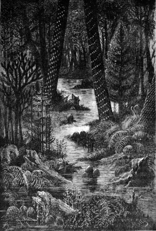 contemplated: Landscapes missing ages! no human eyes do you contemplated, no orcille not understood your harmonies, vintage engraved illustration. Earth before man – 1886.
