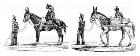 magasin pittoresque: New mode of transportation of wounded soldiers, vintage engraved illustration. Magasin Pittoresque 1842. Stock Photo