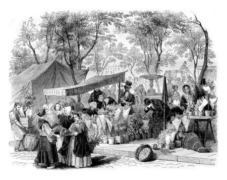 The flower market, vintage engraved illustration. Magasin Pittoresque 1842. Imagens