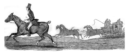Kob, little horse half-blood who struggle with speed trunk Boston for thirty-three leagues, vintage engraved illustration. Magasin Pittoresque 1845. Stok Fotoğraf