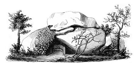 Napoleons Cave in Ajaccio, vintage engraved illustration. Magasin Pittoresque 1842.