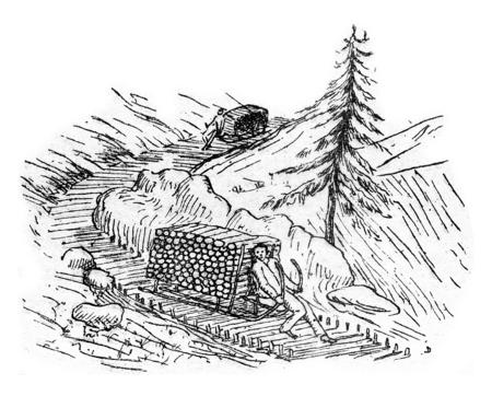 sledging: Sledging, vintage engraved illustration.