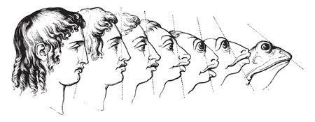 By J. J Grandville, vintage engraved illustration. Magasin Pittoresque 1844.