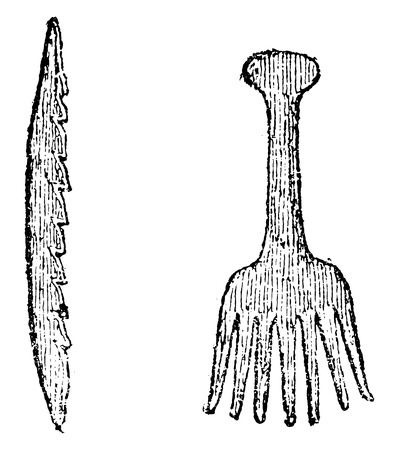Bone harpoon, Bone comb from Denmark, vintage engraved illustration. From Natural Creation and Living Beings.