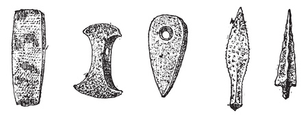 Weapons and tools in polished stone, deposits of Denmark, vintage engraved illustration. From Natural Creation and Living Beings.   イラスト・ベクター素材