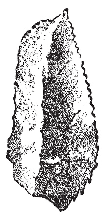 Flint scraper of Perigord, vintage engraved illustration. From Natural Creation and Living Beings. Illustration