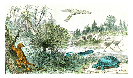 Ideal landscape of the Cretaceous period, vintage engraved illustration. From Natural Creation and Living Beings. Reklamní fotografie