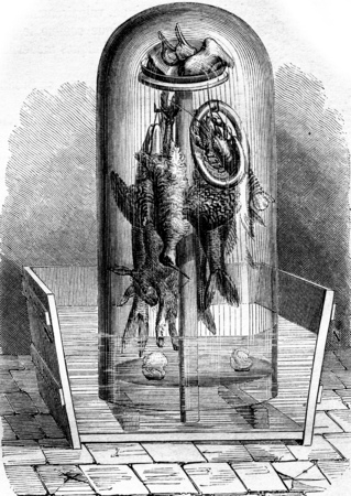 Apparatus for preserving meat, fish and game, vintage engraved illustration. Magasin Pittoresque 1855.