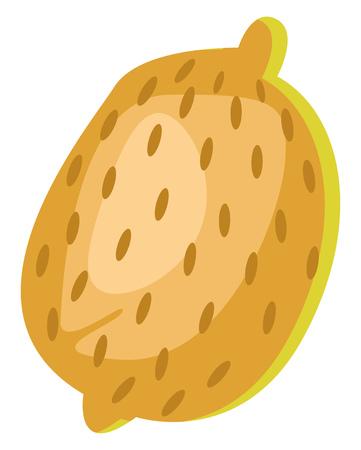 A Papaya fruit with dots in orange color, vector, color drawing or illustration. Ilustração