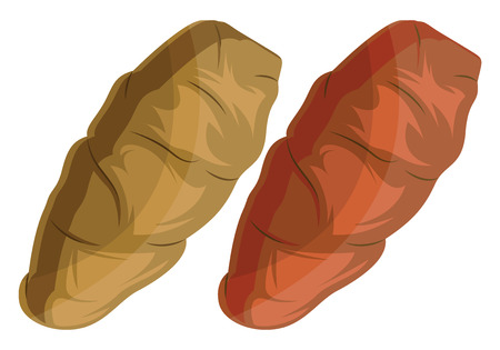 Dark yellow and orange yam roots vector illustration of vegetables on white background. Illustration