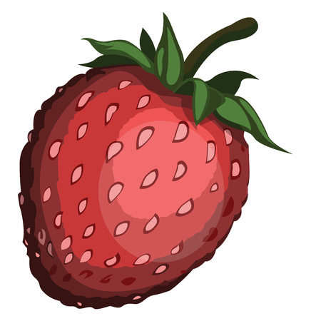 Cartoon red strawberry with green petel vector illustration on white background.