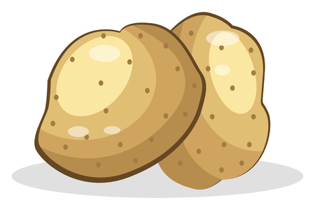 Two Potatoes with dots around in white background vector color drawing or illustration.