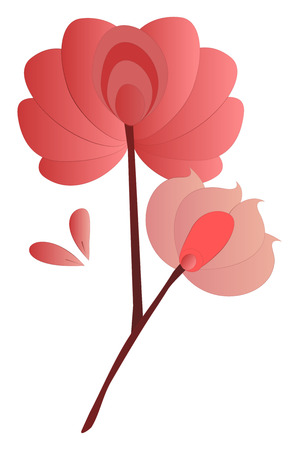A Flower Branch with two flowers in pink color petals vector color drawing or illustration. Illustration
