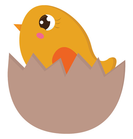 Yellow chick in an egg shell vector illustration on white background.