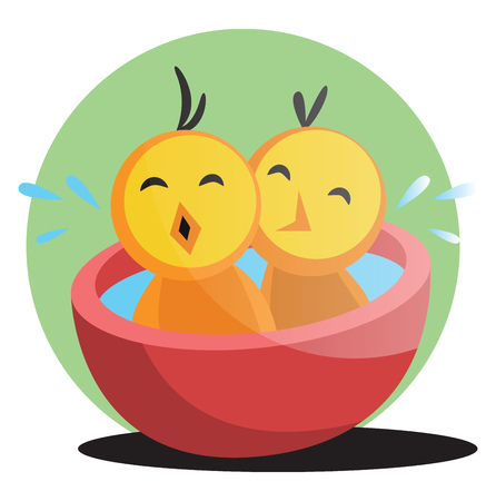 Two cute yellow chick bathing illustration web vector on white background