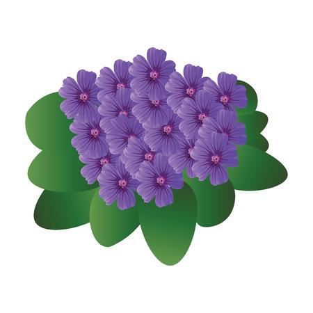 Illustration vectorielle de fleurs violettes violettes avec des feuilles vertes sur fond blanc. Vecteurs