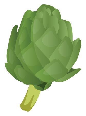 Green artichoke vector illustration of vegetables on white background. Vettoriali