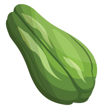Green cartoon chokos vector illustration of vegetables on white background.