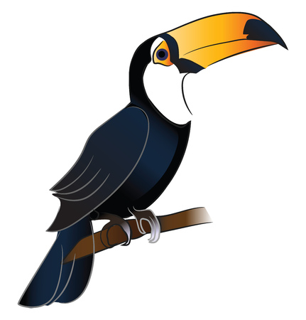 A toucan bird with bright orange beak is sitting on a branch vector color drawing or illustration  イラスト・ベクター素材