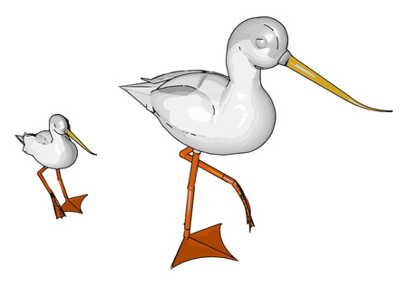 A large fish eating wading bird with long legs a long S- shaped neck and a pointed bill known for being a supreme hunter symbolize showmanship and athleticism vector color drawing or illustration